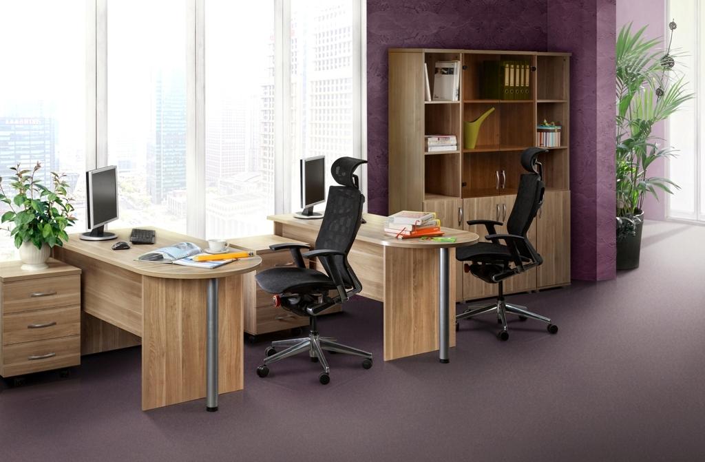Мебель серии Менеджер